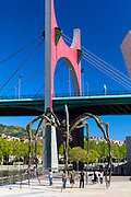The Red arches by artist Daniel Buren at La Salve Bridge, Maman spider by Louise Bourgeois at Guggenheim in Bilbao, Basque country, Spain