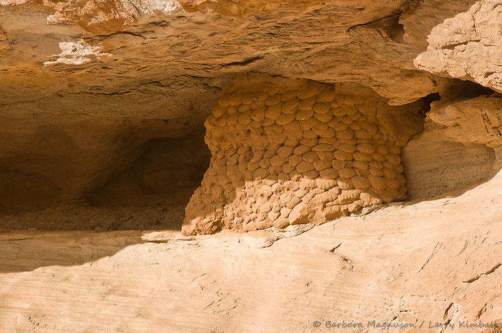 Granary used to store corn or other food raised by the Fremont people more than 500 years ago, typical masonry built into a cliff overlooking Fremont River; Capital Reef NP., Utah