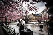 Dam med paraply tar en selfie vid dammen i Kungsträdgården i Stockholm