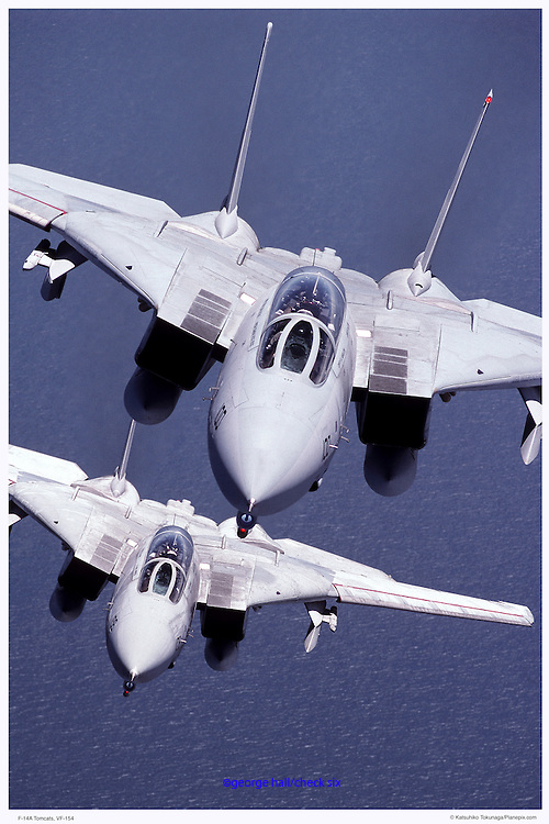 F-14s from VF154, air-to-air