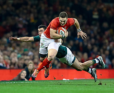 2018-11-24 Wales v South Africa