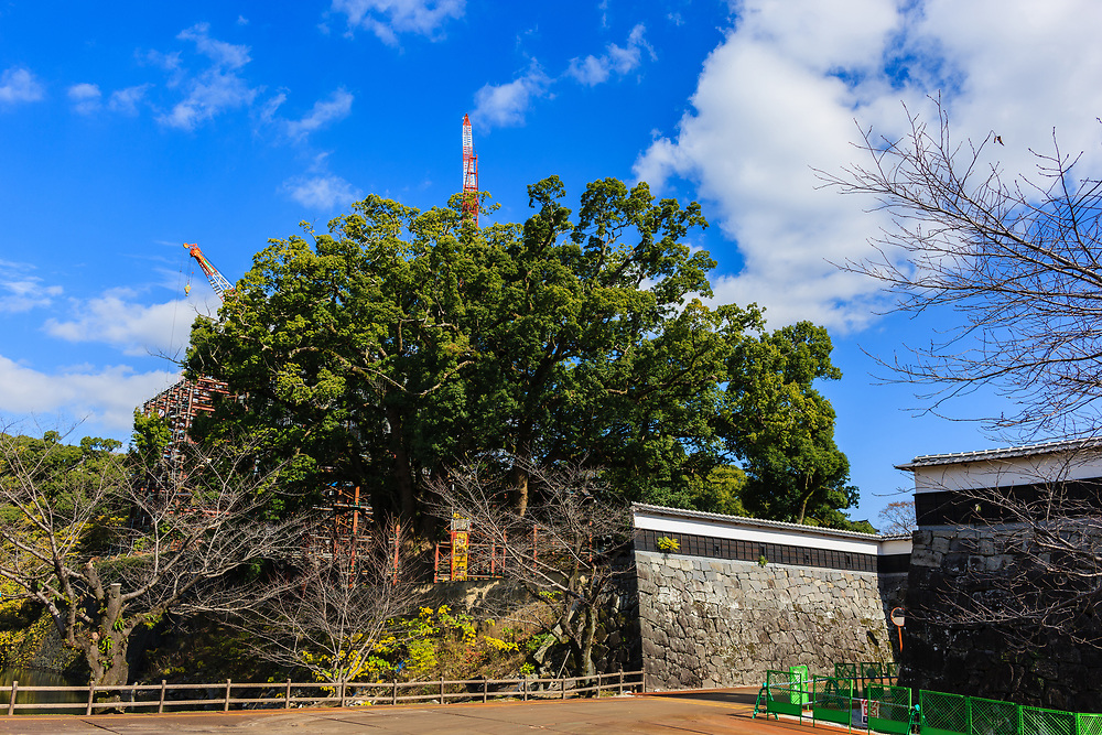 Kumamoto Castle under re-construction following the 2016 earthquake.