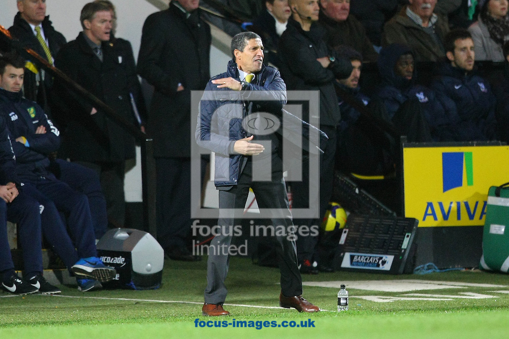 Picture by Paul Chesterton/Focus Images Ltd +44 7904 640267<br /> Norwich Manager Chris Hughton gets animated during the Barclays Premier League match at Carrow Road, Norwich.