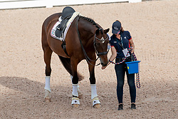 Graves Laura, USA, Verdades<br /> World Equestrian Games - Tryon 2018<br /> © Hippo Foto - Dirk Caremans<br /> 14/09/2018