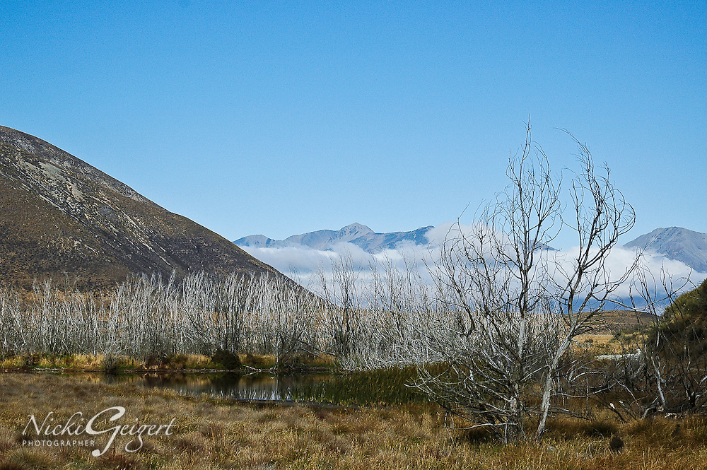 Landscape with trees and hills with mountains and low clouds in the background. Landscape and nature photography prints for sale.