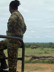 Jan. 19, 2015 - BALULE RESERVE, SOUTH AFRICA: A recruit watches a pair of rhinos. LED BY BRITISH former military personnel these pictures show how courageous women anti-poachers train with guns in their battle to preserve Africa's endangered animals. Operating in the Kruger National Park's Balule Nature Reserve the 24-member strong all-female Black Mamba Anti-Poaching Unit patrols 50,000 hectares of bush to protect elephants and rhinos that are hunted as part of the estimated £12billion a year illegal world animal trade. These ladies, who as pictures show pose with weapons but also know how to party, are on the front line of a deadly war for the resources of their continent. Over the past year 1,000 wildlife rangers have been killed in Africa while protecting endangered wildlife. Black Mamba Commander and former Royal Navy serviceman Russell Baker (28) from Grimsby, UK explained exclusively how and why this South African special unit was established. (Credit Image: © Media Drum World/MediaDrumWorld/ZUMAPRESS.com)