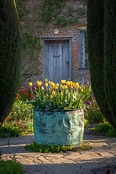 Tulips in the Cottage Garden at Sissinghurst Castle in spring