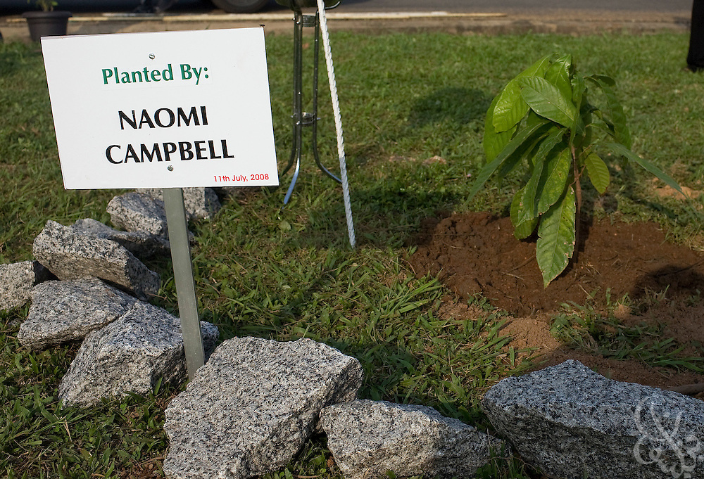 "A sign marks the spot where super model Naomi Campbell planted a cocoa tree during a ceremony in association with the 3rd annual ThisDay festival July 11, 2008 in Abuja, Nigeria. The ThisDay festival, themed ""Africa Rising"", is an effort to raise awareness of African issues and promote positive images of Africa using music, fashion and culture.."