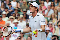 Tennis - 2017 Wimbledon Championships - Week Two, Monday [Day Seven]<br /> <br /> Men's Singles, Fourth Round<br /> <br /> Andy Murray (GBR) vs. Benoit Paire (FRA)<br /> <br /> Andy Murray argues with the Umpire after he refused him 'Hawkeye' on Centre Court <br /> <br /> COLORSPORT/ANDREW COWIE