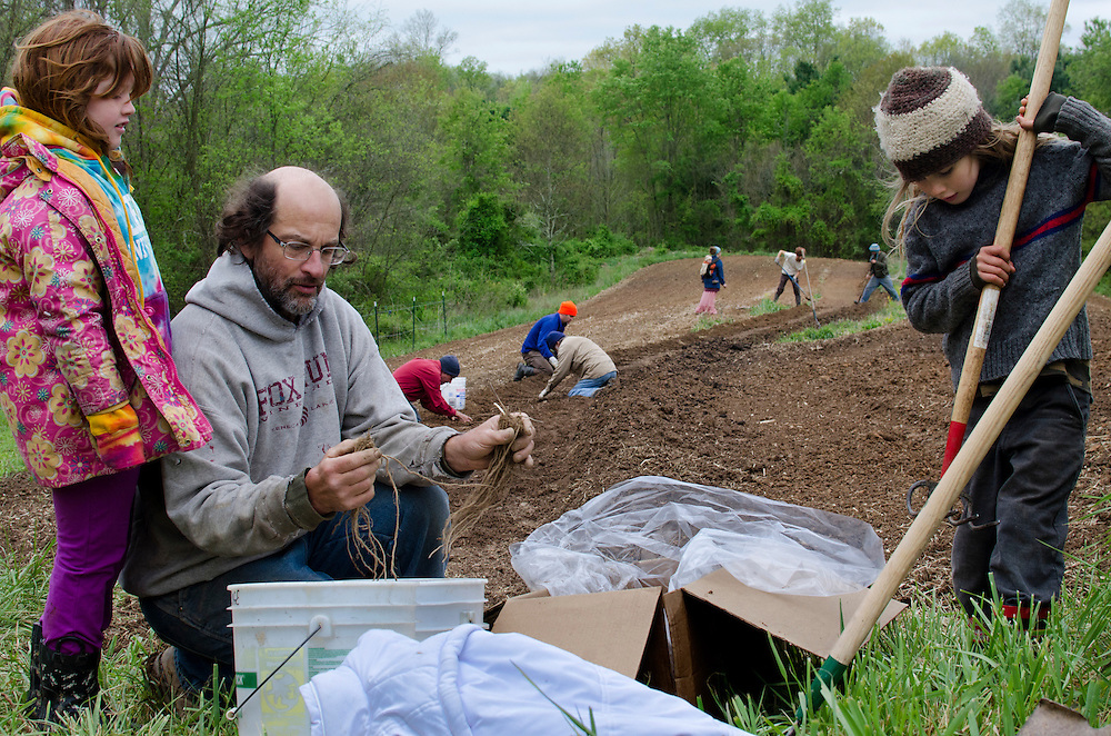 "Members of Currents get together for a community planting of over 500 asparagus roots. It is a place where everyone pitches in because Currents is based on democratic principles. Bob Henninge says, ""One thing that's always been true of Currents is that we've never even remotely had a leader. It has always been a shared leadership, a going forward together. We are a plural. What we're trying to do is form something like a voluntary tribe; a cooperative is a voluntary association. We have to find a way forward in a future that honestly reflects the desires and dreams of a very strong majority."""