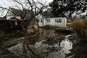 Residents and houses after the flood waters recede on Ham Island on the river Thames near Old Windsor. Thames Valley. UK