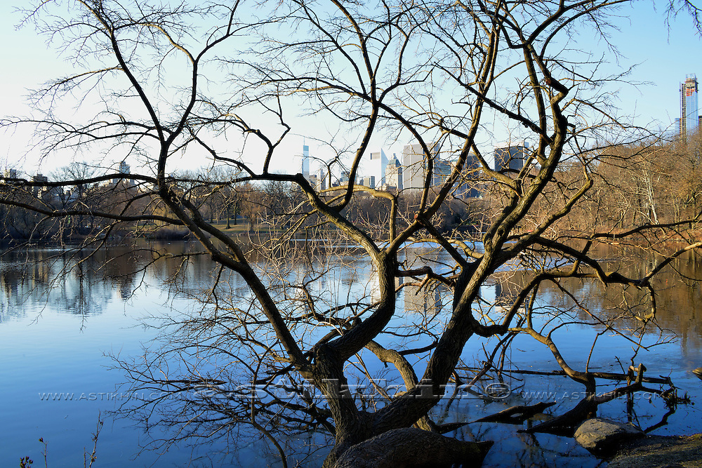 Morning in Central Park. Manhattan.