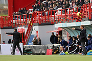 Both Hamilton Academical manager Martin Canning  and Glasgow Celtic Manager Brendan Rogers point during the Ladbrokes Scottish Premiership match between Hamilton Academical FC and Celtic at New Douglas Park, Hamilton, Scotland on 24 November 2018. Pic Mick Atkins
