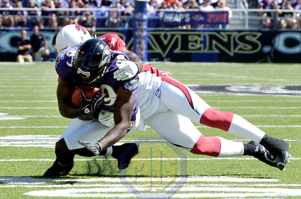 23 September 2007:  Baltimore Ravens wide receiver Mark Clayton (89) catches a pass for a 3-yard gain in the 2nd quarter before being tackled by Arizona Cardinals cornerback Antrel Rolle (21).  The Ravens defeated the Cardinals 26-23 on a 46 yard field goal by Matt Stover with no time remaining at M&T Bank Stadium in Baltimore, Md. .