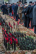 An officer stands to attention in front of his regimental area - The Duke of Edinburgh, Life Member, Royal British Legion, accompanied by Prince Harry, visit the Field of Remembrance at Westminster Abbey  - 10 November 2016, London.