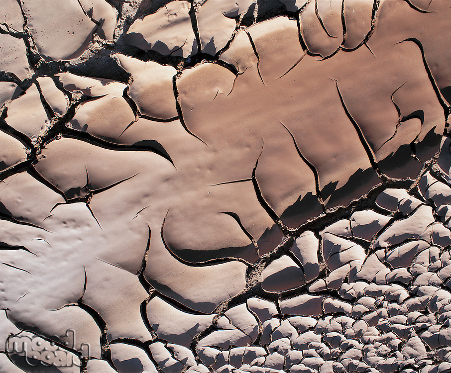 Dried mud and dirt