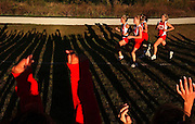 Naperville Central High School sophomore cross country runners cheer on the school's varsity runners in a meet against Naperville North in Wheaton, Ill.....