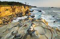 The rugged headlands of Shore Acres State Park on the Oregon Coast. The sandstone cliffs are studded with whimsical mineral concretions.