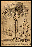 "The Serpent and Eve  in the Garden of Eden from Francis Quarles ""Emblemes"" 1635. Snake in the Tree of Knowledge. Vintage woodcut illustration."