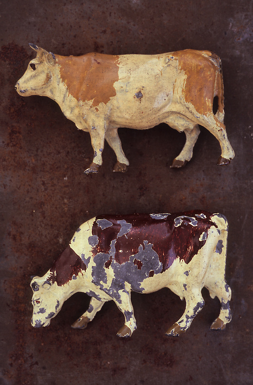 Close up of battered and scratched lead models of white and light brown cow lying on rusty metal sheet above white and dark brown cow