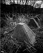 THE ATLANTIC WALL. .pic shows: HOLLAND. ANTI TANK 'DRAGONS TEETH' IN THE FOREST AT VALKENISSE ON WALCHEREN WEST OF MIDDELBURG.  PART OF THE DEFENCE OF THE SCHELDE RIVER AND THE PORT OF ANTWERP..WORLD WAR TWO ENDED IN EUROPE IN MAY 1945, THIS YEAR SEES THE 60th ANNIVERSARY OF THAT VICTORY..THE ATLANTIC WALL BUILT BY GERMANY IN WORLD WAR 2 STRETCHED FROM NORWAY VIA DENMARK, HOLLAND, BELGIUM AND FRANCE TO THE SPANISH BORDER. THE MAIN CONCENTRATION OF BUNKERS,BLOCKHOUSES AND DEFENCES WERE ALONG THE DUTCH, BELGIAN AND FRENCH COASTAL AREAS MOST UNDER THREAT FROM AN ALLIED INVASION. THE CONSTRUCTION OF THE WALL BEGAN IN 1942 AND CONTINUED UP UNTIL THE JUNE 6th ALLIED INVASION ON D-DAY IN 1944..TENS OF THOUSANDS OF WORKERS AND PRISONERS FROM THE GERMAN OCCUPIED AREAS OF EUROPE WERE EMPLOYED BY THE ORGANISATION TODT NAMED AFTER FRITZ TODT, THE GERMAN ENGINEER WHO DIED IN 1942 (TO BE SUCEEDED BY ALBERT SPEER) IN THE BUILDING WORK. BETWEEN THE RIVERS LOIRE AND DIVES 87,257 WORKERS WERE USED INCLUDING 55,000 FRENCHMEN, 11,500 GERMANS, 4,200 DUTCH, 6.600 BELGIANS, 2,600 NORTH AFRICANS AND SEVERAL THOUSAND FROM EASTERN EUROPE..THE ATLANTIC WALL WAS THE LARGEST BUILDING PROJECT SINCE THE ROMAN EMPIRE. MANY OF THE COLOSSAL GUN BUNKERS AND UNDERGROUND DEFENSIVE CHAMBERS REMAIN. SOME HAVE FALLEN FROM CLIFF TOP POSITIONS WHILE OTHERS ARE PARTLY CONSUMED BY SAND DUNES. THE RAVAGES OF WAR, TEN THOUSAND TON BOMBS AND 60 YEARS OF COASTAL WEATHER HAVE HARDLY AFFECTED THESE LEVIATHAN LIKE STRUCTURES WHICH LOOK LIKELY TO LAST AS LONG AS THE RUINS OF ANCIENT ROME. A FITTING REMINDER OF A WORLD THAT COULD HAVE BEEN FROM 60 YEARS AGO..COPYRIGHT PHOTOGRAPH BY BRIAN HARRIS  © 2005.07808-579804
