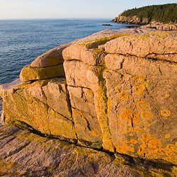 Early morning on the pink granite ledges of the rocky coast in Maine's Acadia National Park.  Otter Cliffs are in the distance. Mount Desert Island.