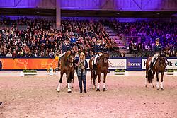 EK Zilveren Teams Young Riders en U25<br /> KWPN hengstenkeuring - 's Hertogenbosch 2020<br /> © Hippo Foto - Dirk Caremans<br /> 31/01/2020