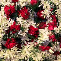 Asia, India, Calcutta. Floral garlands from the flower market in Calcutta.