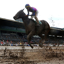 Jockey Tyler Baze riding Show Stealer finished second in the Santa Maria Stakes (Grade II) in the rain and mud during horse racing at Santa Anita Park in Arcadia, Calif., on Saturday, Feb 11, 2017.
