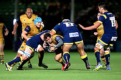 Rhodri Williams of Bristol Rugby is tackled - Mandatory by-line: Robbie Stephenson/JMP - 04/11/2016 - RUGBY - Sixways Stadium - Worcester, England - Worcester Warriors v Bristol Rugby - Anglo Welsh Cup
