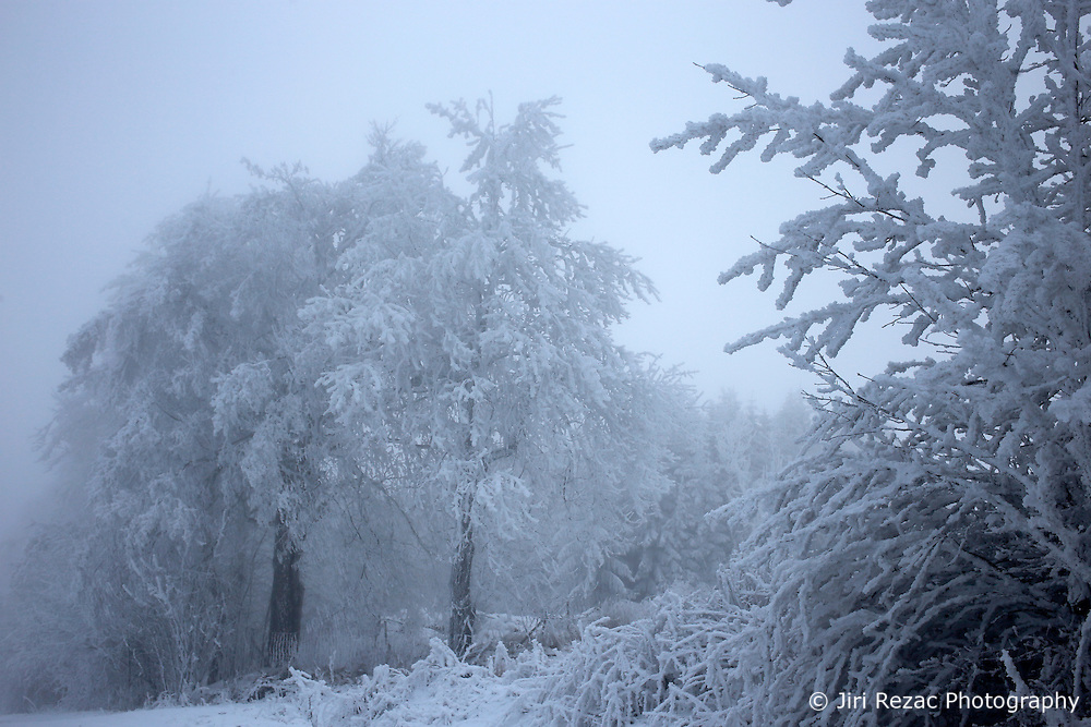 CZECH REPUBLIC VYSOCINA NEDVEZI 22DEC16 - Winter landscape with frozen fog on trees near the village of Nedvezi, Czech Republic.<br /> <br /> jre/Photo by Jiri Rezac<br /> <br /> © Jiri Rezac 2016