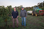 Ted & Ben Casteel samples freshly picked grapes from 2017  harvest, Bethel Heights, Eola-Amity AVA, Willamette Valley, Oregon