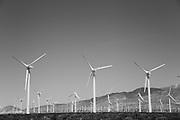 Palm Springs Iconic Wind Turbines