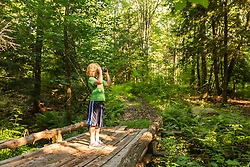A boy birdwatching on a forest trail in Madbury, New Hampshire.