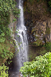 Alajuela Province:  A roadside waterfall brightens a road in the Central Highlands, an hour's drive northeast of San Jose.
