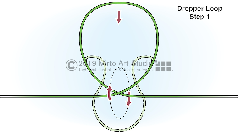 A vector illustration of a Drop Loop Knot used for fishing