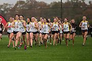 NJAC XC Championships at Richard Stockton College in Pamona, NJ on Saturday November 1, 2014. (photo / Mat Boyle)