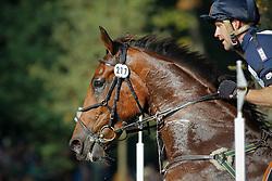 Kooremans Raf - Vadrouille en Solo<br /> Military Boekelo CCI *2008<br /> Photo © Hippo Foto