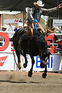 14: CALGARY STAMPEDE SADDLE BRONCS 2