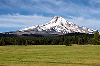 Mt. Hood rising high above the Hood River Valley in Oregon, USA