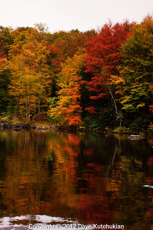 reflections on peacham pond, vt