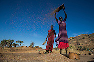 Women process a harvest of Sorghum. The Nuban people are bracing for another hunger season this summer.