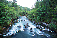 North Fork of the Middle Fork of the Willamette near Oakridge, Oregon.