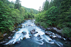 Middle Fork of the Willamette River, Oregon
