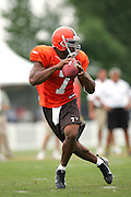 BEREA, OH - AUGUST 3:  Rookie free agent quarterback Darrell Hackney #7 of the Cleveland Browns drops back to pass during training camp at the Cleveland Browns Training and Administrative Complex on August 3, 2006 in Berea, Ohio. ©Paul Anthony Spinelli *** Local Caption *** Darrell Hackney