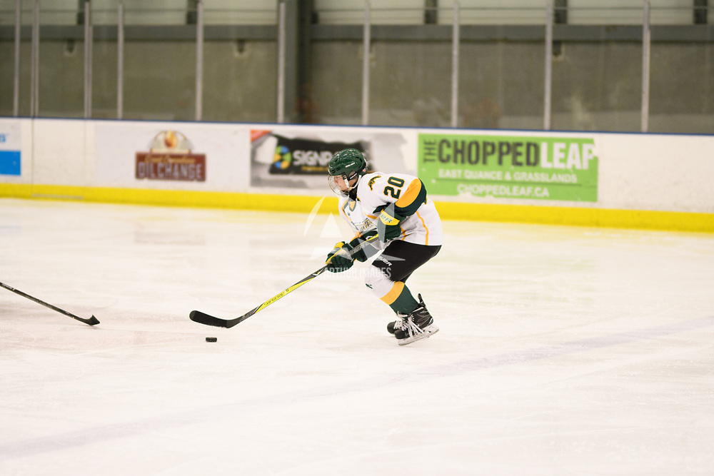2nd year defence man Mariah McKersie (20) of the Regina Cougars in action during the Women's Hockey home game on November 17 at Co-operators arena. Credit: Arthur Ward/Arthur Images