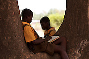 Two schools sit reading in the shade under a tree in Tizza Junior High School.