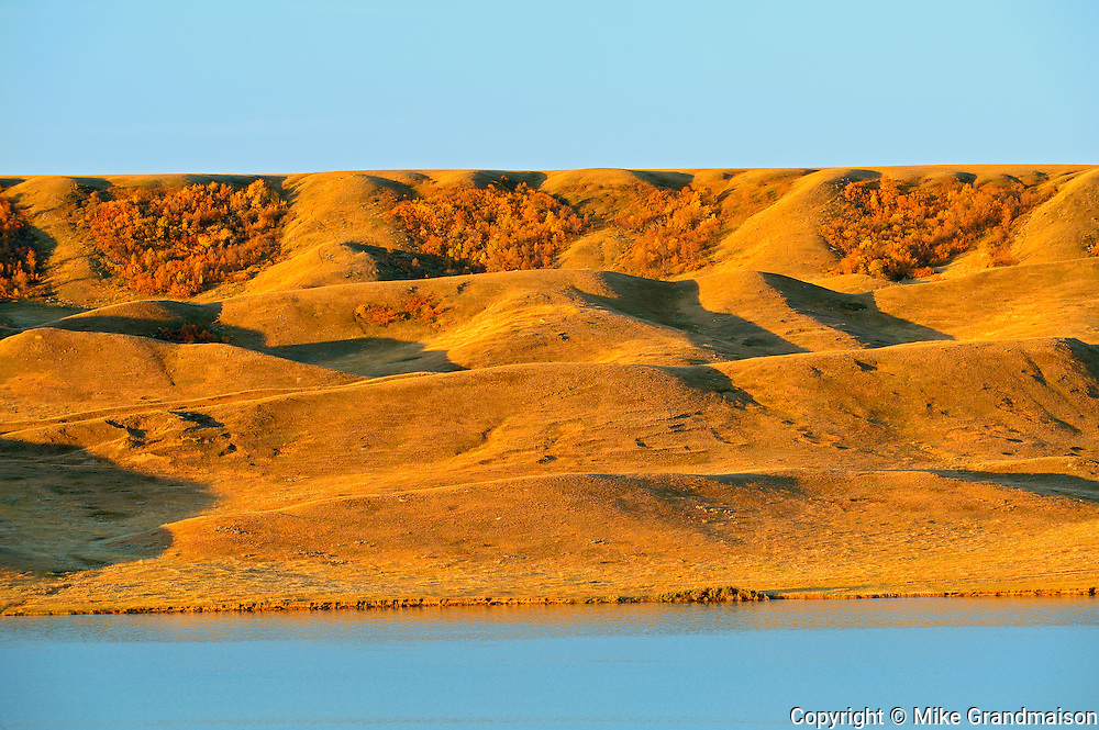South Saskatchewan River and surrounding hills in autumn at sunrise<br /> Saskatchewan Landing Provincial Park<br /> Saskatchewan<br /> Canada