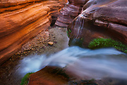 Deer Creek cascades into the narrows below The Patio. Grand Canyon National Park in Arizona.