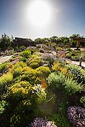 20140617 Mordecai Children's Garden